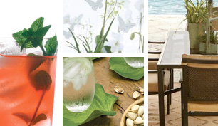a medley of summer images--a mint julep, a picnic table outside, orchids, and water on a leaf