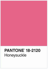 Pantone Honeysuckle Journal
